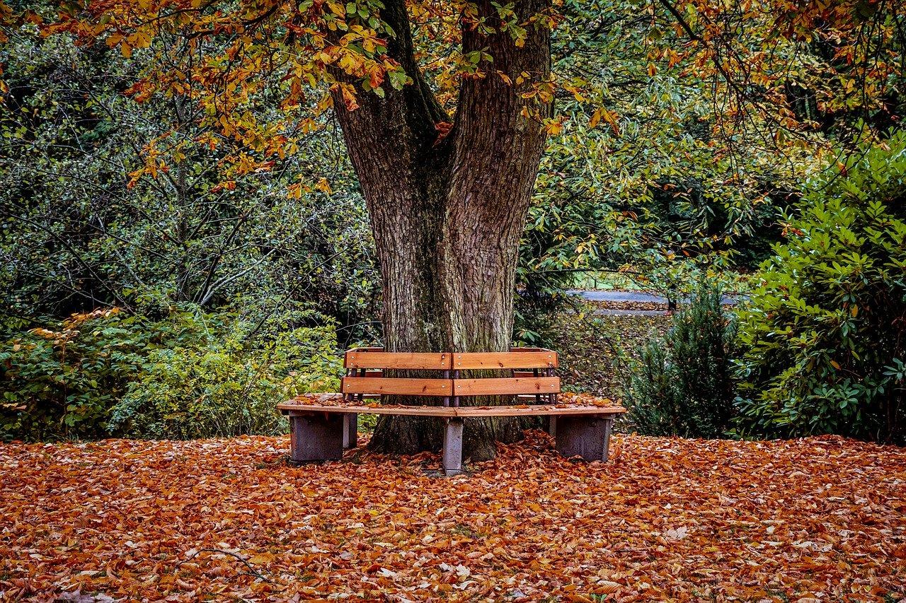 autunno – Laterradipuglia.it