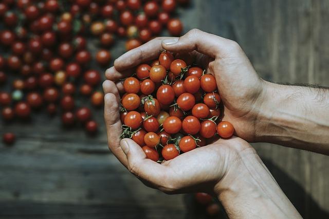 passata-di-pomodoro-italiana