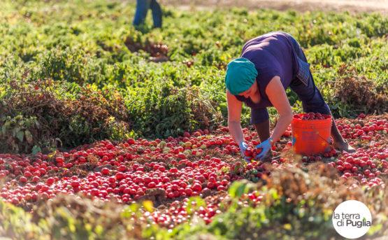 La Puglia deve difendere tanti prodotti tipici