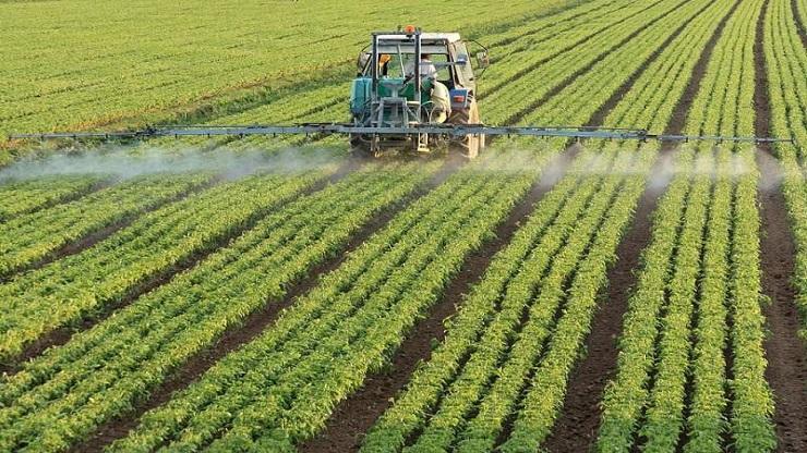 pesticidi-agricoltura1