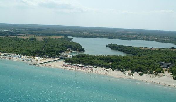 Cosa succede alla Pineta degli Alimini di Otranto?