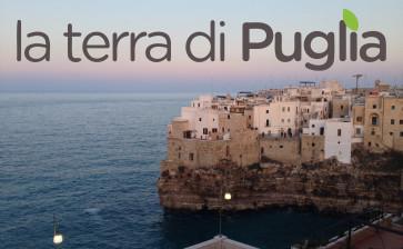 La promozione della Puglia tramite il lancio di un brand