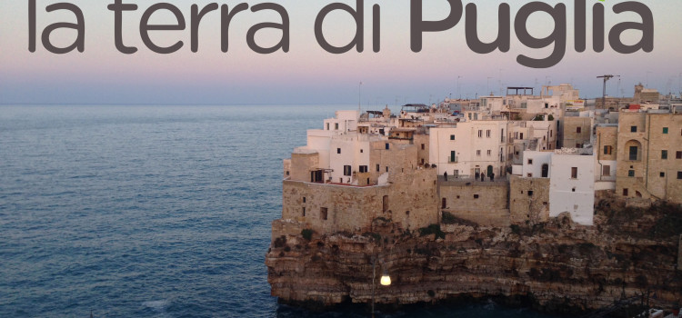 Red Bull Cliff Diving World Series, tutto pronto a Polignano