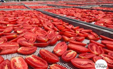 Perché la passata di pomodoro biologica fa bene
