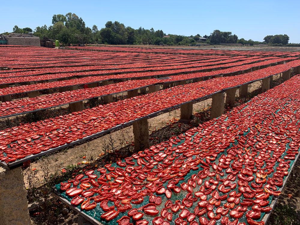 pomodori-secchi-lacupa-1