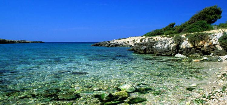 Prendono il via oggi i Puglia Open Days 2013
