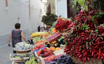 6 motivi per scegliere i prodotti tipici pugliesi e La Terra di Puglia