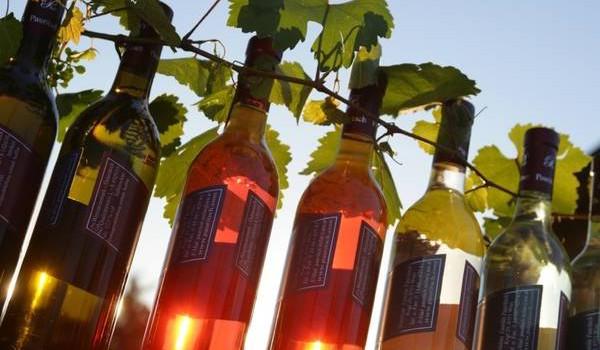 Riparte il Puglia Top Wine Road Show tra Milano e Roma