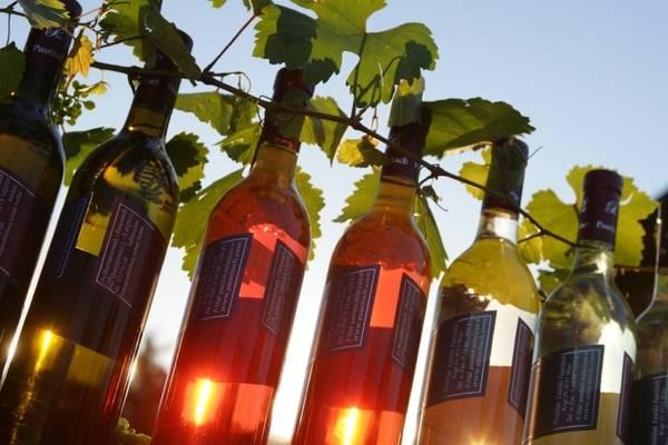 puglia-top-wine-road-show