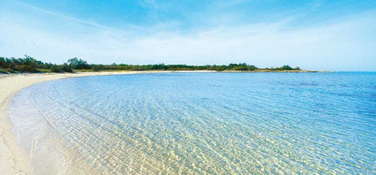 Un tour tra le riserve naturali in provincia di Brindisi