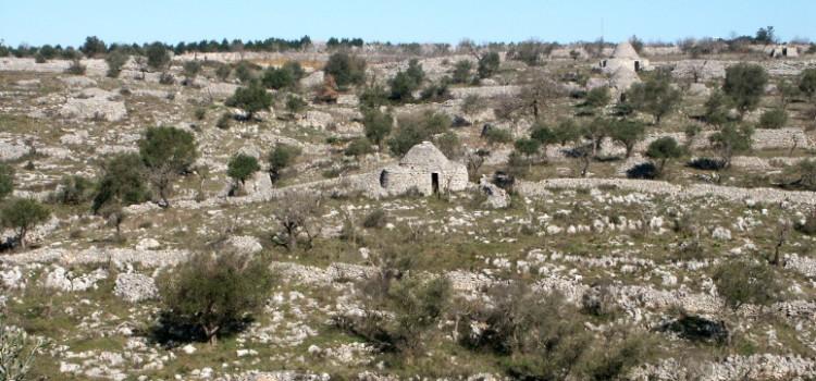 Alla scoperta delle riserve naturali di Bari
