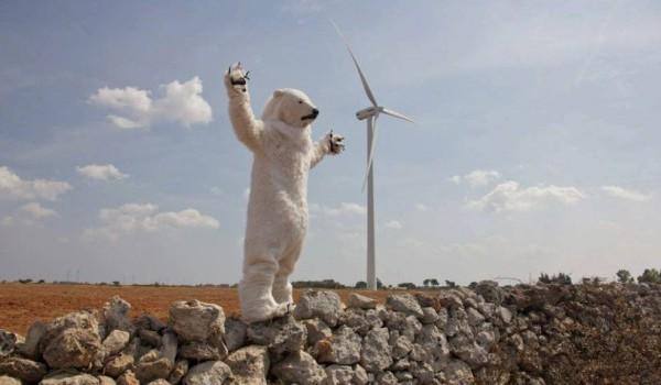 L'orso bianco per la tutela ambientale del Salento