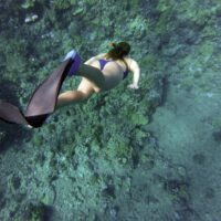 snorkeling in salento - La terra di Puglia.it
