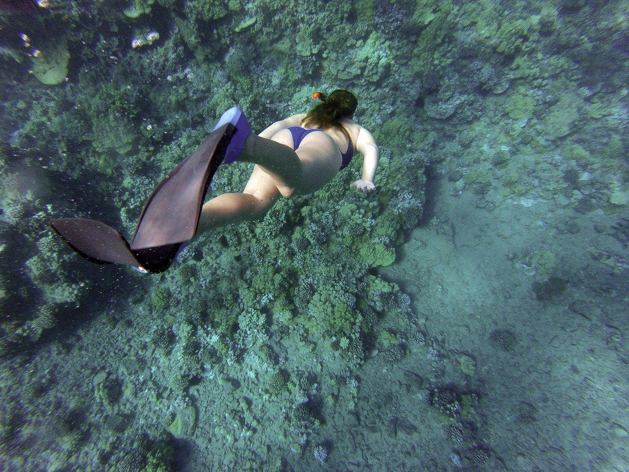 snorkeling in salento – La terra di Puglia.it
