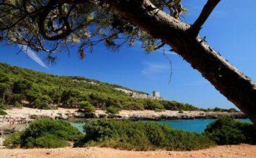 Le solite fakenews sul calo della Puglia, del Salento e di Gallipoli !?