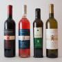 tenuta-macchia-olio-vino