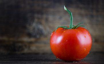 Sua maestà il pomodoro, oro rosso di Puglia