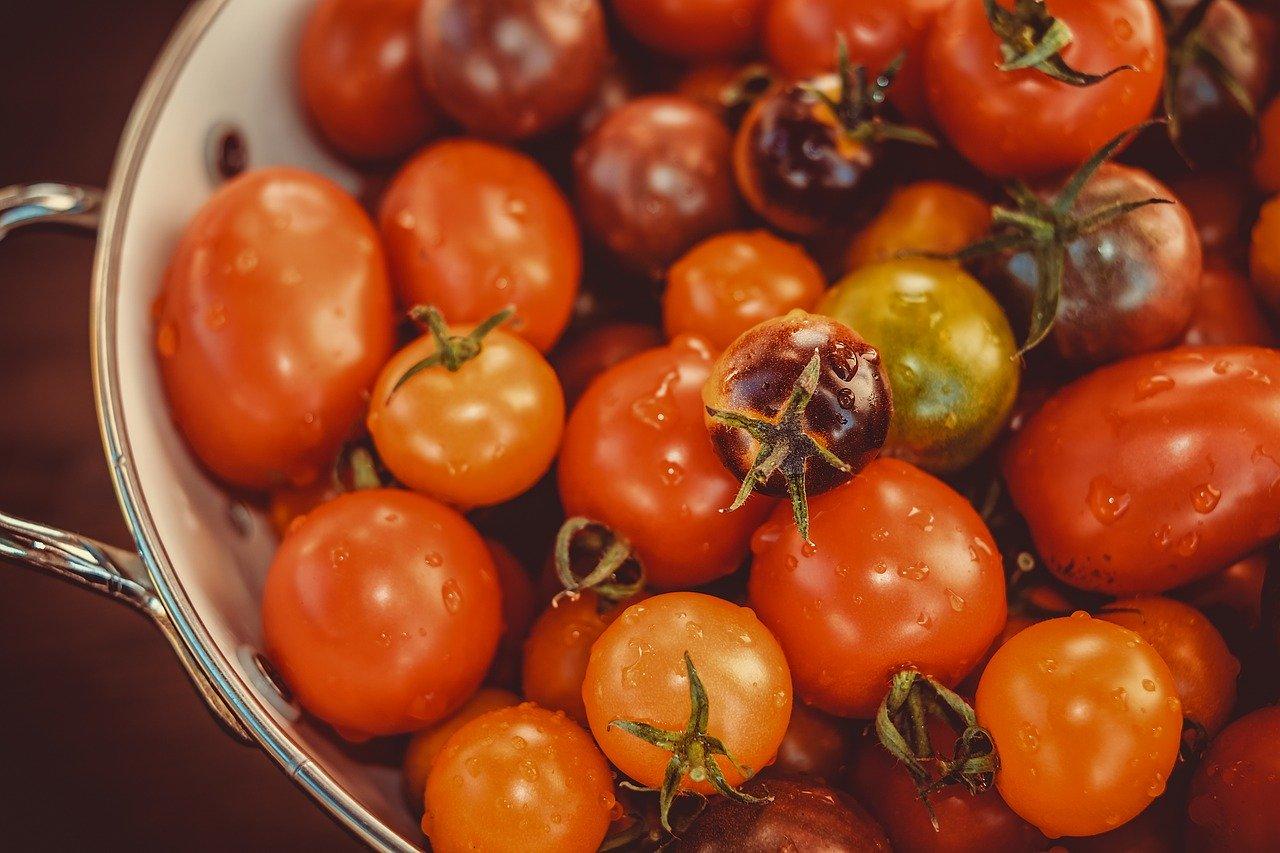 Pomodori datterini pugliesi – La Terra Di Puglia
