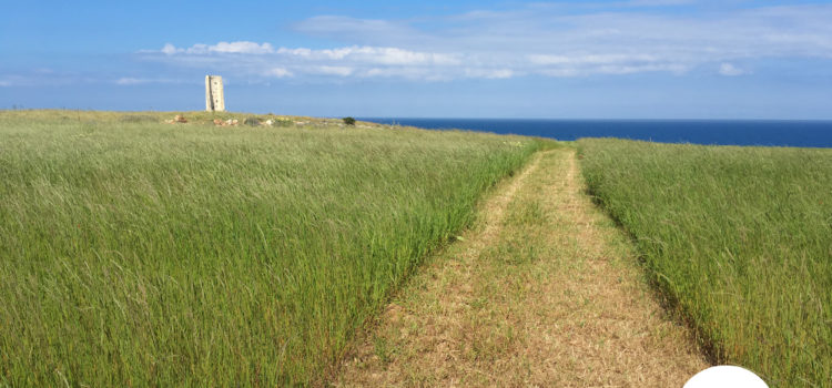 La leggenda della Torre del Serpente, Otranto