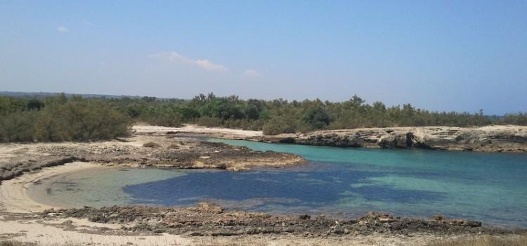 Torre Guaceto: una riserva naturale tra il mare e la terra di Puglia