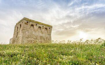 Riserve naturali Le Cesine e Torre Guaceto: voglia di natura!