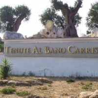 Vini Albano Puglia