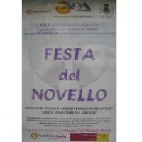 Vino novello 2011